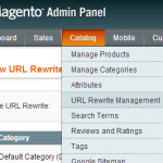 Magento URL Rewriting, Regex and 301 Redirects Tips