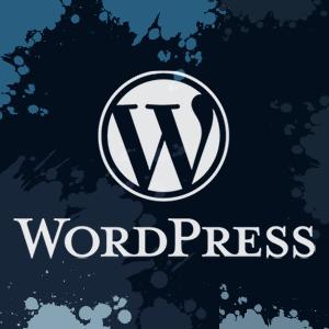 Best WordPress Plugins in 2013